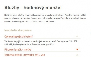 hodinový manžel Pardubice - služby